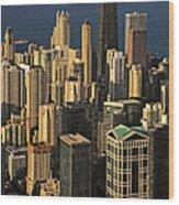 Through The Haze Chicago Shines Wood Print