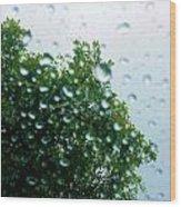Through The Rain Wood Print