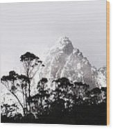 Through The Trees Come Mountains Wood Print by Lee Stickels