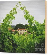 Through The Vines Wood Print by Lainie Wrightson