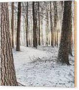 Thru The Pines Wood Print by Andrea Galiffi