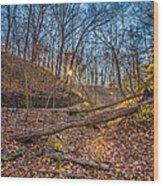 Thru The Woods Wood Print