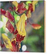 Thunbergia Mysorensis - Trumpetvine Wood Print