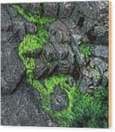 Thunder Hole Algae Wood Print