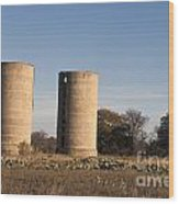 Thurber Dairy Silos Texas Wood Print
