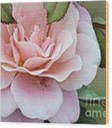 Tiara Pink Wood Print