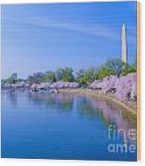 Tidal Basin And Washington Monument With Cherry Blossoms Wood Print
