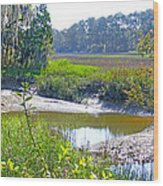 Tidal Creek In The Savannah Wood Print