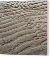 Tidal Footprint Wood Print