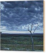 Tidal Marsh View Wood Print