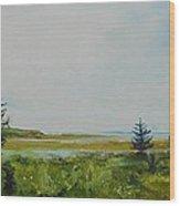 Tidal Plains Wood Print