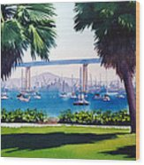 Tide Lands Park Coronado Wood Print by Mary Helmreich