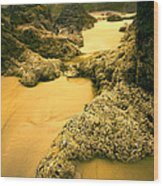 Tidepools From Above Wood Print