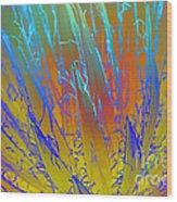 Tie Dye Agave Wood Print