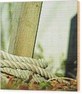 Ties Wood Print