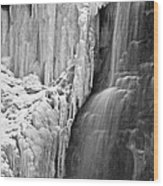 Tiffany Falls - A Study In Black And White Wood Print
