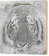 Tiger #1 Wood Print