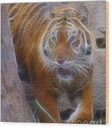 Tiger-5362-fractal Wood Print