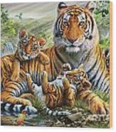 Tiger And Cubs Wood Print by Adrian Chesterman