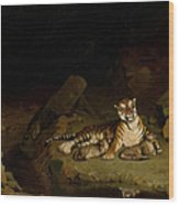 Tiger And Cubs Wood Print