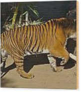 Tiger Beat Wood Print