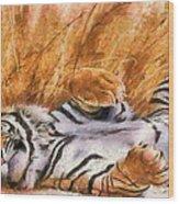 Tiger - Big Cat Wood Print