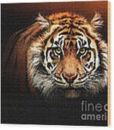 Tiger Bright Wood Print
