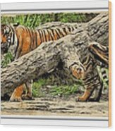 Tiger By The Log Wood Print
