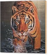 Tiger Crossing Water Wood Print