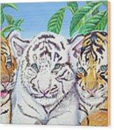 Tiger Cubs Wood Print