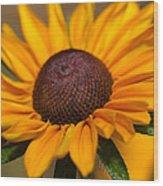 Tiger Eye Wood Print