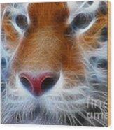 Tiger Face Fractal Wood Print