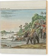 Tiger Hunting On An Indian River Wood Print