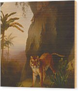 Tiger In A Cave Wood Print