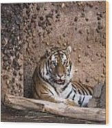 Tiger In Color Tote Bag For Sale By Becca Buecher