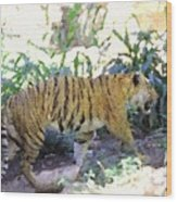 Tiger In Crayon Wood Print by Judy  Waller