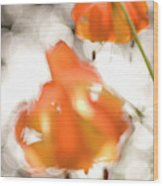 Tiger Lillies Near The Rogue Wild River Wood Print