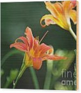 Tiger Lily And Bud   # Wood Print