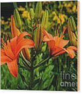 Tiger Lily Blossoms Wood Print