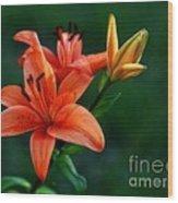 Tiger Lily Enchantment  Wood Print