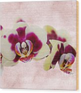Tiger Orchid Wood Print