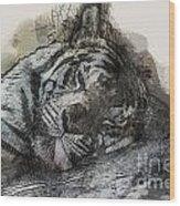 Tiger R And R Wood Print