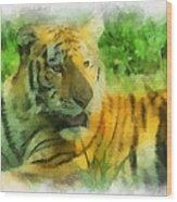 Tiger Resting Photo Art 01 Wood Print