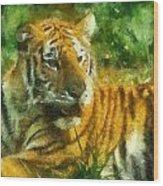 Tiger Resting Photo Art 02 Wood Print