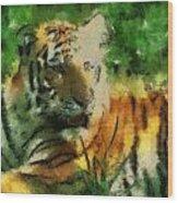 Tiger Resting Photo Art 03 Wood Print