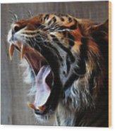 Tiger Roar Wood Print