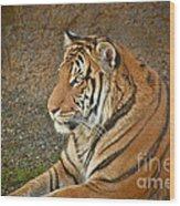 Tiger Stair Wood Print