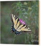Tiger Swallowtail I Believe Wood Print