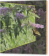 Tiger Swallowtail Oob-featured In Beautycaptured-oof-harmony And Happiness Wood Print