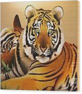 Tiger Tales Wood Print by Shannon Rogers